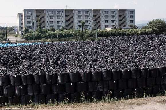 2D289BEB00000578-0-To_save_space_the_radioactive_bags_of_soil_are_stacked_on_top_of-a-124_1444230141885.jpg
