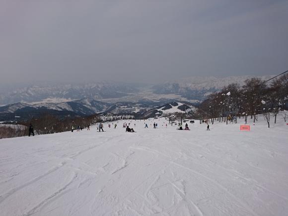 DSC_3823.JPG