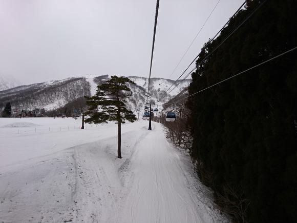 DSC_4070.JPG