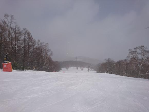 DSC_4826.JPG