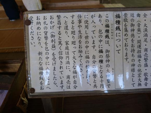 DSC_8451.JPG