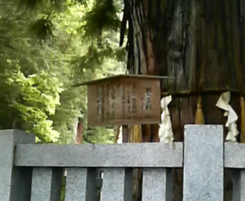 諏訪大社秋宮さん