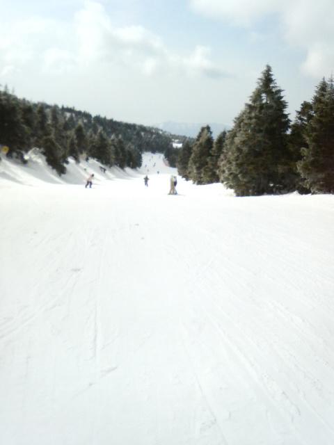 樹氷原コース