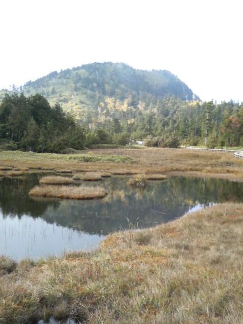 奥志賀山と四十八池湿原